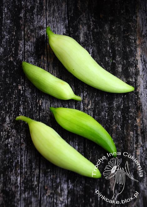 ogórek peruwiański, caigua, peppino, cyclanthera