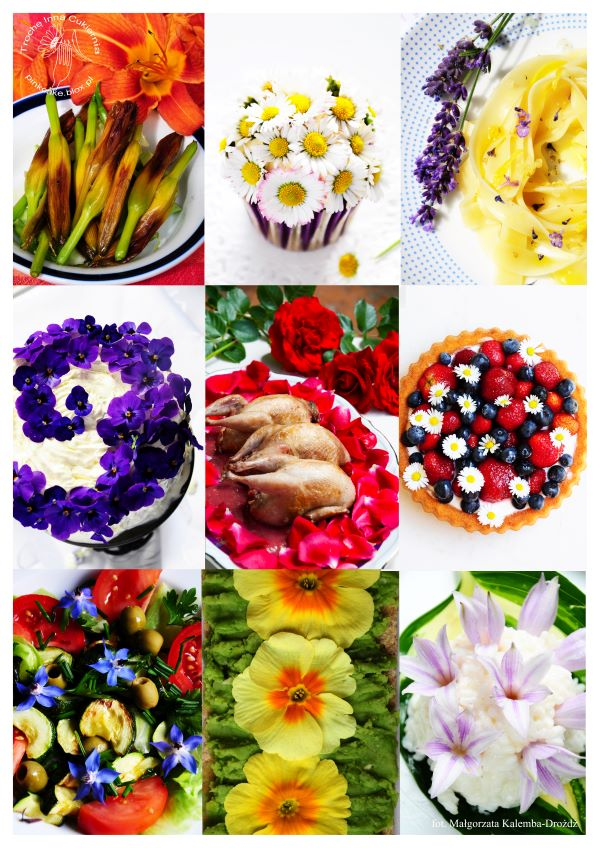 edible flowers, jadalne kwiaty, przepisy z jadalnymi kwiatami, flowers to eat, edible flowers recipes, małgorzata kalemba-drozdz, flowers you can eat